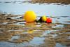 Saint-Briac sur mer bouees flotteurs - atana studio (Anthony SÉJOURNÉ) Tags: saintbriac sur mer bouees flotteurs atana studio anthony séjourné buoyant