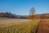 Hanging Fog (Baker_1000) Tags: 2016 bristol ashtoncourt sunrise dawn morning firstlight frost winter fog nikond90 nikon d90 raw