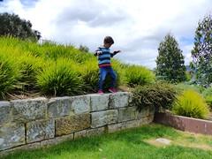 Yet another stage (Snuva) Tags: mona museumofoldandnewart hobart tasmania australia