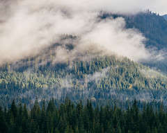 Immersion (Pedalhead'71) Tags: snoqualmiepass washington landscape fog mountain easton unitedstates us