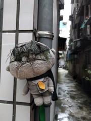 Little guy in Taiwan (ashabot) Tags: taipei taiwan streetscenes street citystreets cities