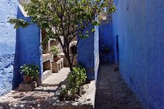 Klasztor św. Katarzyny | Santa Catalina Monastery