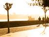 Paseando en contraluz. Walking in backlight. (Esetoscano) Tags: contraluz backlight gente people personas persons bruma fog luz light árboles trees paseomarítimo promenade experimental ares acoruña galiza galicia españa spain
