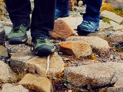 Mountain Trail (David_Blair) Tags: nikon coolpix l840 nikoncoolpix nikoncoolpixl840 mountain mountains macro macros closeup closeups trail bennevis nevisrange scotland shoe shoes boot boots path ground stone stones rock rocks landscape wild wilderness wildlife winter