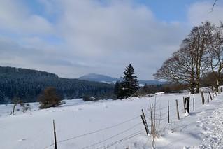 Im Habichtswald