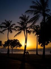 Hawaiian sunset (802701) Tags: hawaiiansunset sunset waikiki honolulu oahu hawaii silhouette treesilhouette