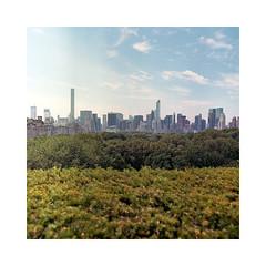 (roberto_saba) Tags: kiev88cm kiev carlzeissjena zeiss flektogon mediumformat 6x6 120 kodak portra 400 newyork nyc ブローニー centralpark skyline