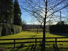 Sunny Day (Marc Sayce) Tags: sunny day february winter spring 2017 chilcomb hampshire south downs national park way