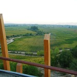 Weingut Lapostolle im Colchagua-Tal in Chile