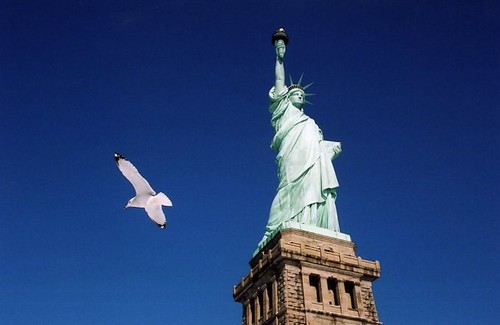 Statue of Liberty and seagull