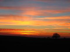 (Ally123) Tags: sunset sky 15fav espaa tree backlight clouds contraluz spain december leon