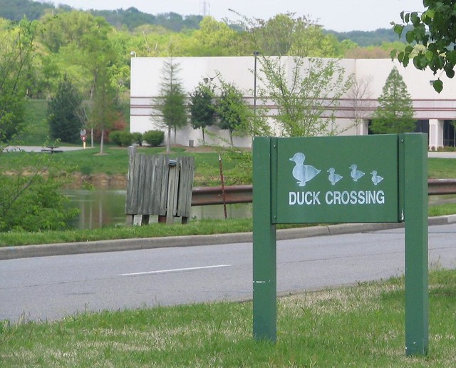 Duck Crossing sign - Metrocenter - Nashville