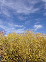 Picture 315 (Yayu) Tags: antelopecanyon glencanyondam horseshoebend