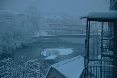still snowing (Dreamer7112) Tags: winter snow 20d schweiz switzerland europe suisse canon20d zurich canoneos20d snowing zrich svizzera winterwonderland eos20d zurigo latemarchsnow
