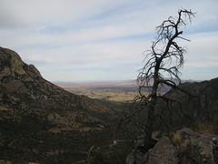 coronado national memorial - 1 (steev hise) Tags: arizona tree tag3 taggedout sonora landscape mexico tag2 tag1 border