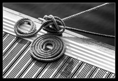 June (Somewhere In Toronto) Tags: 2005 blackandwhite bw white black contrast rope knot toned blackandwhitephoto blackandwhitephotograph somewhereintoronto