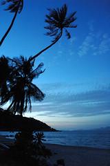 DSC_6121.JPG Koh Samui Thongson Bay Bungalows (Vilhelm Sjostrom) Tags: park blue sea sky sun hot tree green beach water coral night geotagged thailand island bay climb lenstagged haze sand nikon warm paradise gulf view d70 coconut turquoise horizon scenic headquarters hike palm 1870mmf3545g lap thong jungle palmtree kohsamui boating samui tropical vegetation ang lush nikkor reef kohphangan tao ta humid mustavalkoinen wua talap thongsonbaybungalows cvilhelmsjstrm wwwmustavalkoinenfi