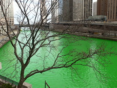 Green River (akabyam) Tags: leica 15fav chicago green topv111 tag3 taggedout tag2 tag1 110fav stpatricksday akabyam 1020fav dlux2 maybeitwasallthegreenbeer spdchicago2006