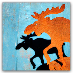 Moose moose (LeFon) Tags: blue sculpture orange color animal nikon antique maine moose bleu boothbay