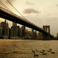 """Golden Brown"": old days and ducks - Brooklyn Bridge 04 (_MaO_) Tags: 2005 nyc bridge light sunset summer sky usa cloud brown sunlight ny newyork stone brooklyn swimming swim river square golden daylight twilight nikon downtown arch manhattan ducks sunny august arches structure artsy shore crop brooklynbridge eastriver coolpix cropped summertime s1 nikons1 bigcalm squared olddays quadrato goldenbrown coolpixs1 worldcitycenters throughmyglasseye ritagliata"