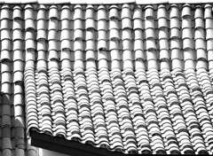 Against the grain (navidbaraty) Tags: california roof blackandwhite bw white abstract black pattern sandiego shingles repetition