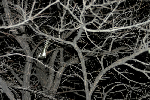 Heel in Tree