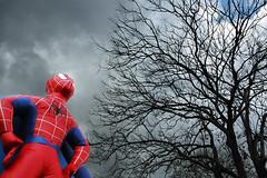 Spider-sense tingling