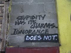 Stupidity has its charms (duncan) Tags: graffiti glasgow words stupidity ignorance topf25 500v20f graffitiwisdom