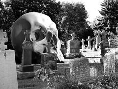 St Marys Cemetery 93 (zenosaurus) Tags: cemeteries art abandoned strange cemetery grave dead death skull decay surrealism cemetary tomb dream surreal graves dreams dada surrealistic bizarre necropolis relic dadaism