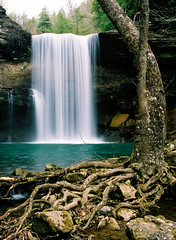 Water, rocks and roots (James Jordan) Tags: travel trees mountains water waterfall plateau great 100v10f falls smoky cumberland movingwater greeter myowncreation rootstennessee flickrdiamond 46twtmesh290746