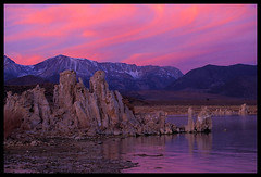 Pink Swept Sky, Mono Lake (Buck Forester) Tags: california pink sunset sky lake nature mono evening desert lakes sierra velvia highdesert sierras monolake tufa tufas southtufa tufatowers