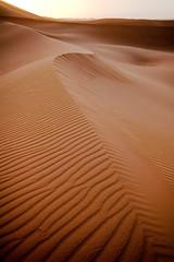 Rippling Sahara Desert