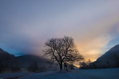 Nebelstimmung (adrianstadelmann) Tags: sunrise fog nebelstimmung nebel fujifilm xt1 xf16mmf14r wangental osterfingen klettgau gorgeous