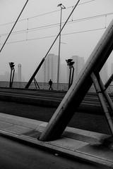 Rotterdam (2) (Hans Dethmers) Tags: rotterdam flickr bridge erasmusbridge brug erasmusbrug silhouette fog mist diagonalen diagonal blackandwhite monochrome zwartwit fuji