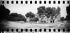 2016-05 - 056SR/059SR - DSC_0024 (sarajoelsson) Tags: sprocketrocket blackandwhite bw panorama panoramic sprocketholes digitizedwithdslr toycamera ilford 135 35mm 2016 hp5 monochrome plasticlens everydaylife filmphotography filmisnotdead believeinfilm filmshooter film wideangle lomography lomo may madrid spain city urban xtol teamframkallning bnw svartvitt blackwhite spring springtime