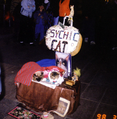 The psychic cats 1998
