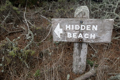 Beach of Irony (CarbonNYC) Tags: beach sign guidance d70s graduation hike hidden direction irony arrow ironic metaphor hiddenbeach pointlobos metaphoric nothidden carbonnyc