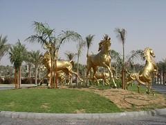 golden arabian horses (Arabian Eagle) Tags: jumeirah dubai