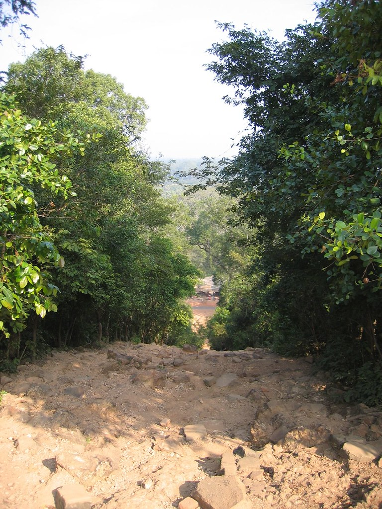 """A steep hiking trail when hiking in Cambodia in summer"""