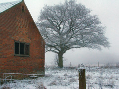Barn and tree (Hindolbittern) Tags: winter snow field rural country norfolk popolo ybp northnorfolk hindolveston popolo2 popolo3 unpopolo unpopolo2 popolo4 popolo5 unpopolo3 popolo6 popolo7 popolo8 unpopolo4 unpopolo5 unpopolo6 unpopolo7 dontgiveapopolo popolo9 unpopolo8 dontgiveapopolo3 popolo10 dontgiveapopolo2 dontgiveapopolo5 dontgiveapopolo4 interestingness89 i500 votedpopolobythepopolopeople tagcorrection