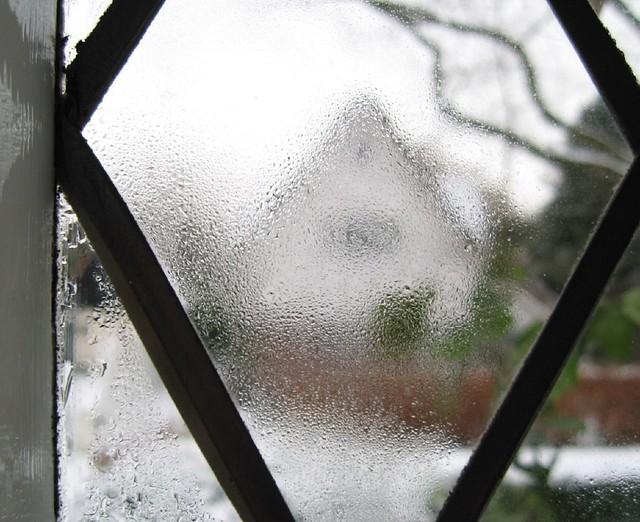 Damp window