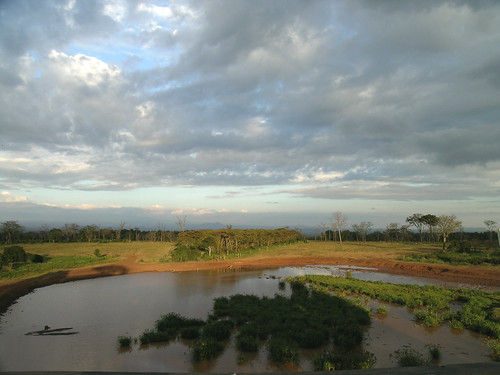 The waterhole at Treetops Lodge