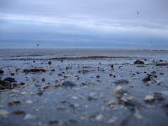 Sandbank (2) (Luca Terracciano) Tags: sea beach geotagged twilight sand mediterranean dusk lagoon laguna grado adriatic mediterraneansea sandbank adriaticsea friuli gorizia friuliveneziagiulia lagoo nofgrado geolat45679140 geolon13380232
