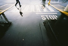 wbw: stop (jon madison) Tags: colour film rain voigtlander bessa stop r 15mm