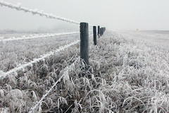 Fence and highway (Kevin Steele) Tags: winter fog mrjackfrost fence highway 500v20f top20winter hoarfrost saskatchewan