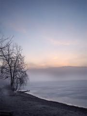 Silent Sea (eastofnorth) Tags: morning 15fav mist lake ice beach nature digital sunrise canon findleastinteresting eonblogged eastofnorth sd20 canonsd20 110fav