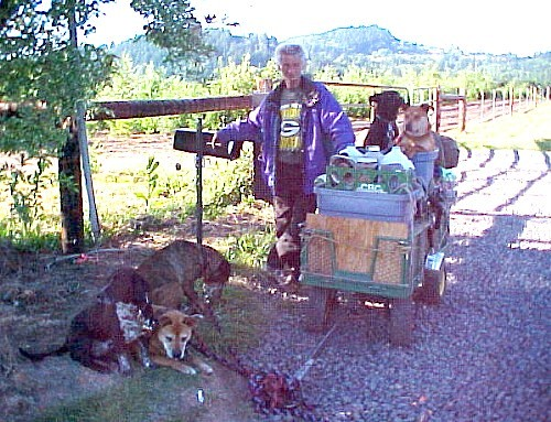 Tubby the Transient with his Cart and 5 Dogs