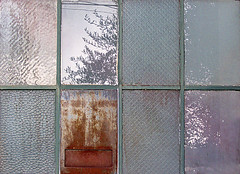 panes (fotogail) Tags: sanfrancisco urban abstract reflection tree window grid rust wires grids fotogail bapfs forestevidence your300pre2006favesthanks