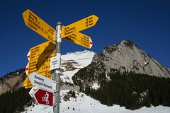 Direction sign (Markus Moning) Tags: schnee winter mountain snow mountains berg sign topv111 way schweiz switzerland shoes sheep hiking path swiss berge direction snowshoeing canoneos350d wandern weg schafberg wanderweg moning richtung wegweiser toggenburg wildhaus schneeschuhe gamplt