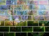 glazed bricks (johanna) Tags: brick reflection pub columbiaroad